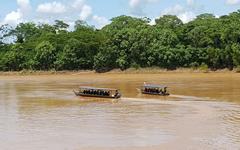 tambopata_river_trip_ecoamericaperu